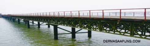 bailey bridge deck type, cross sea or river img 2