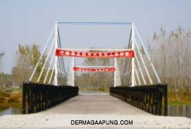 bailey bridge to liyang municipal administration img2